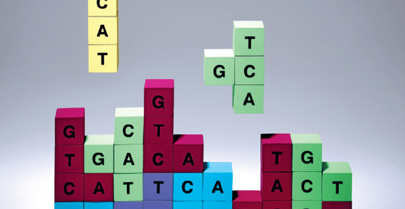 Cartoon tetris representation of DNA bases fitting together