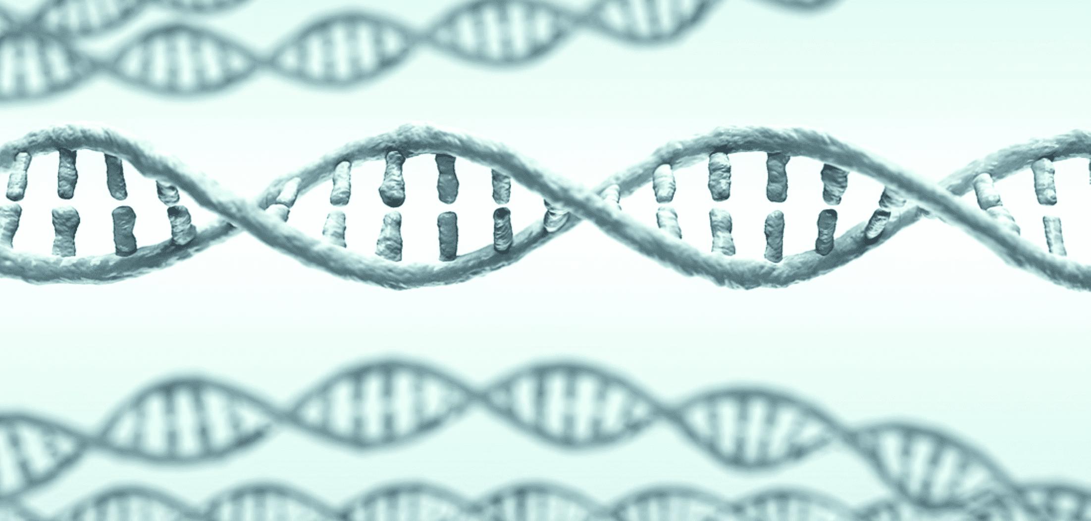 Cartoon representation of a DNA double helix