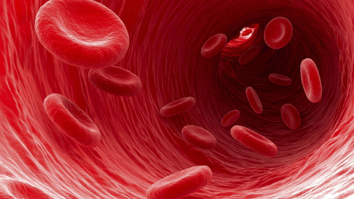 Flowing red blood cells