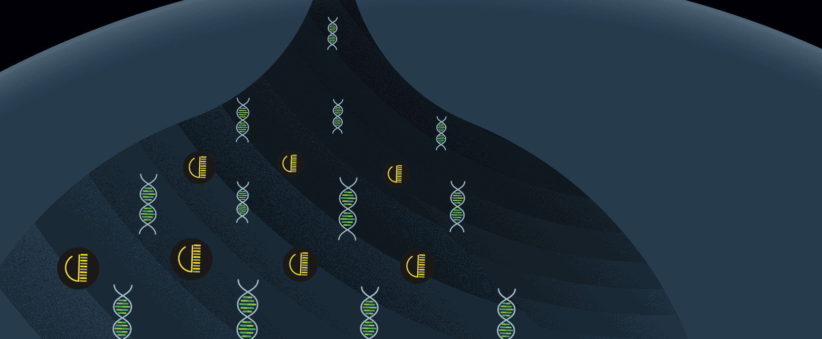 Cartoon of DNA and protein