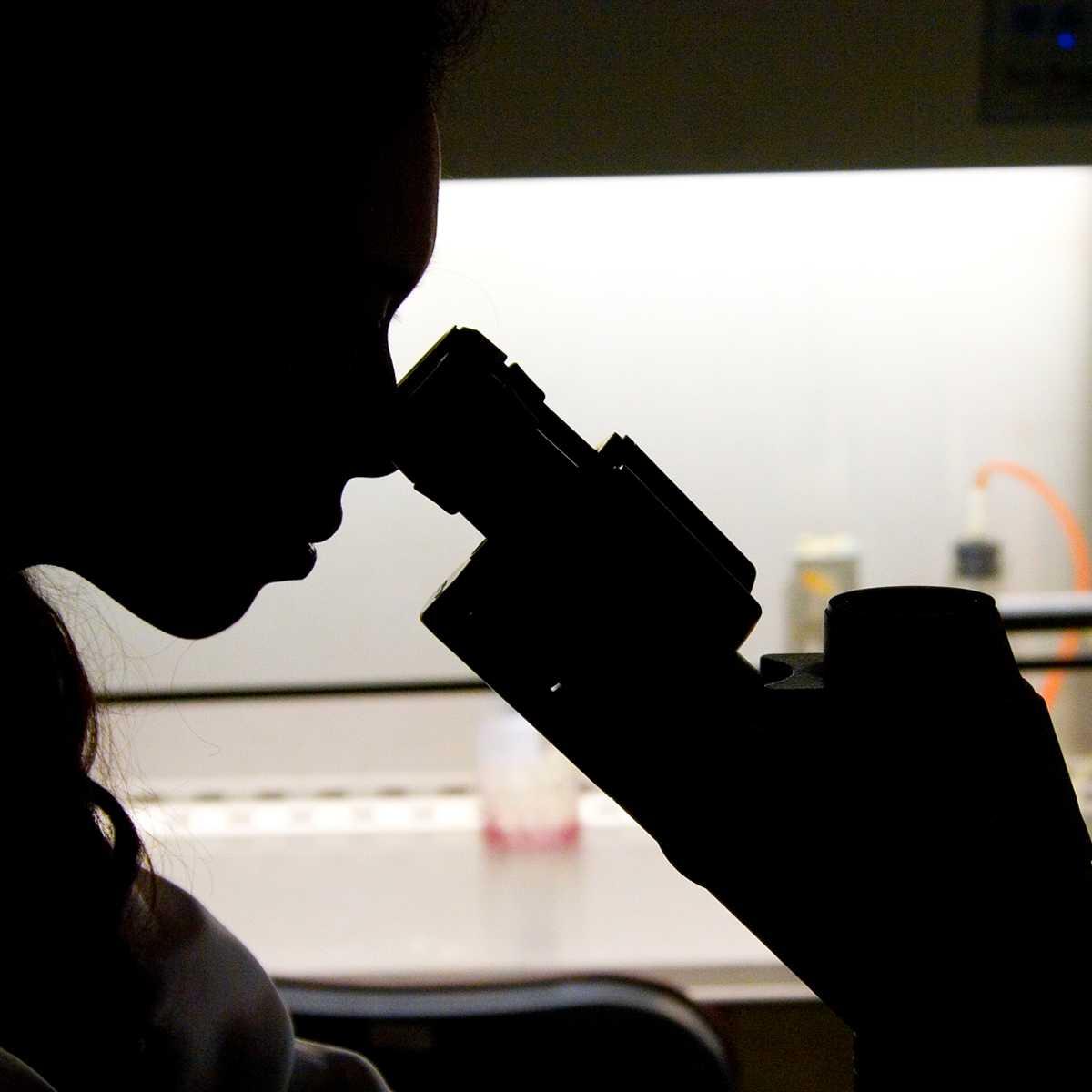Innovative Genomics Institute research