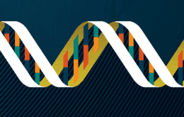 Cartoon of a DNA double helix