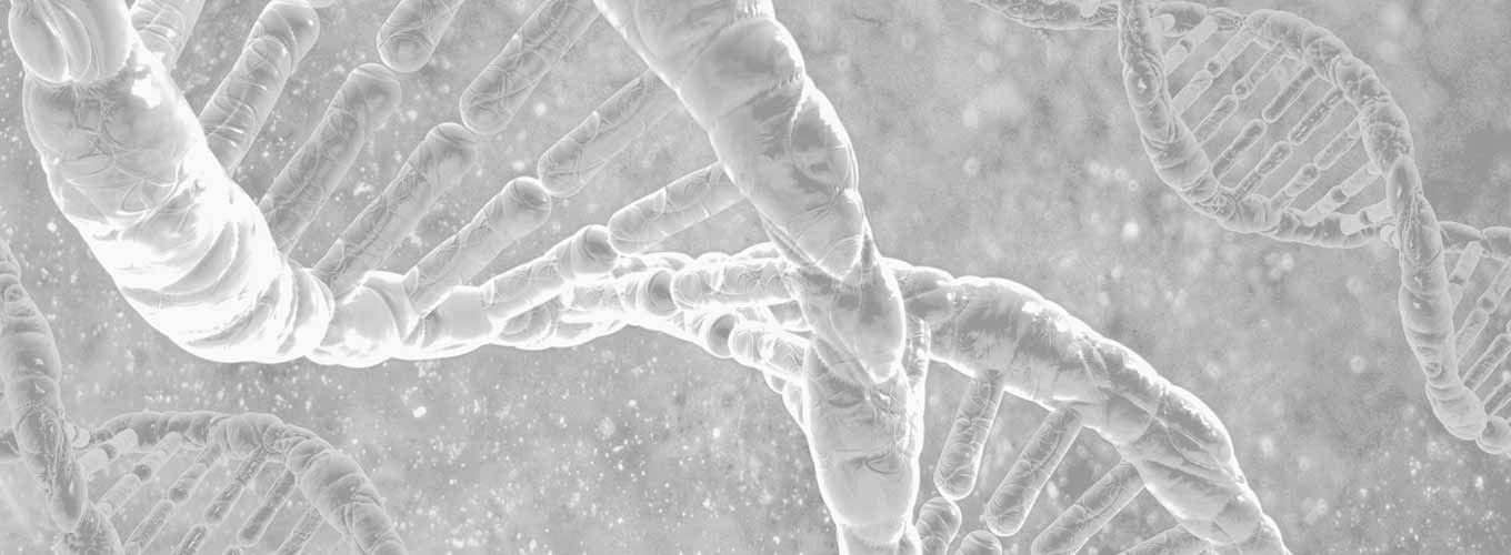 An artist's rendering of the DNA double helix in light greyscale