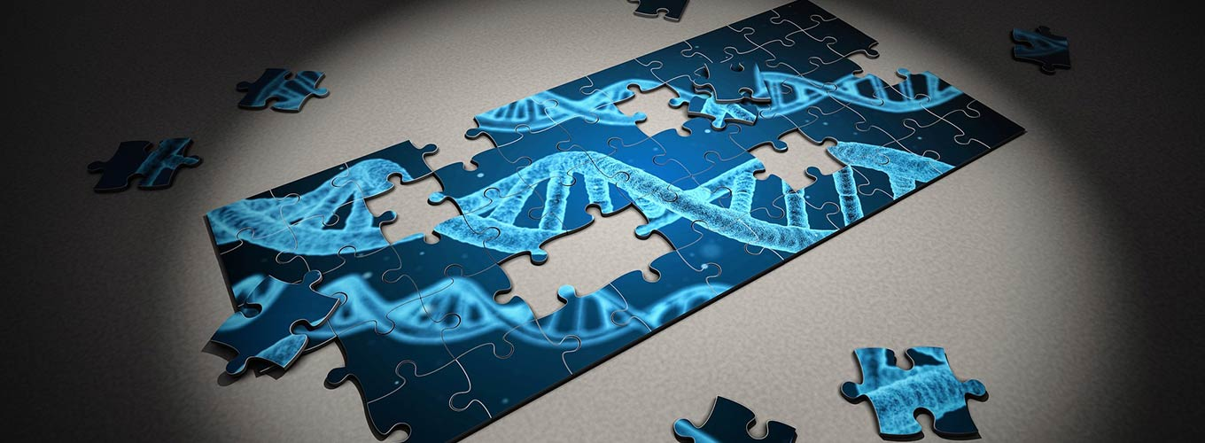 A partially-assembled puzzle featuring an image of DNA