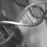 black and white double helix DNA