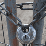 A chain link looped through a fence an secured by a lock