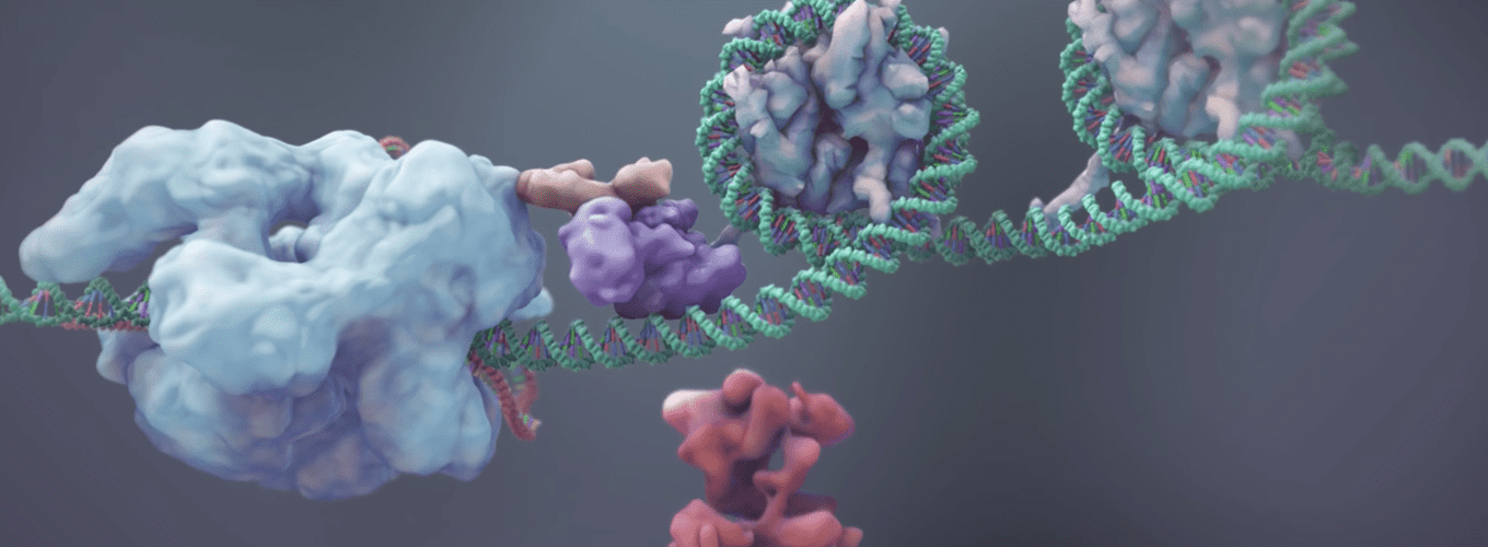 Screenshot from molecular animation about uses of CRISPR-Cas9 and dCas9