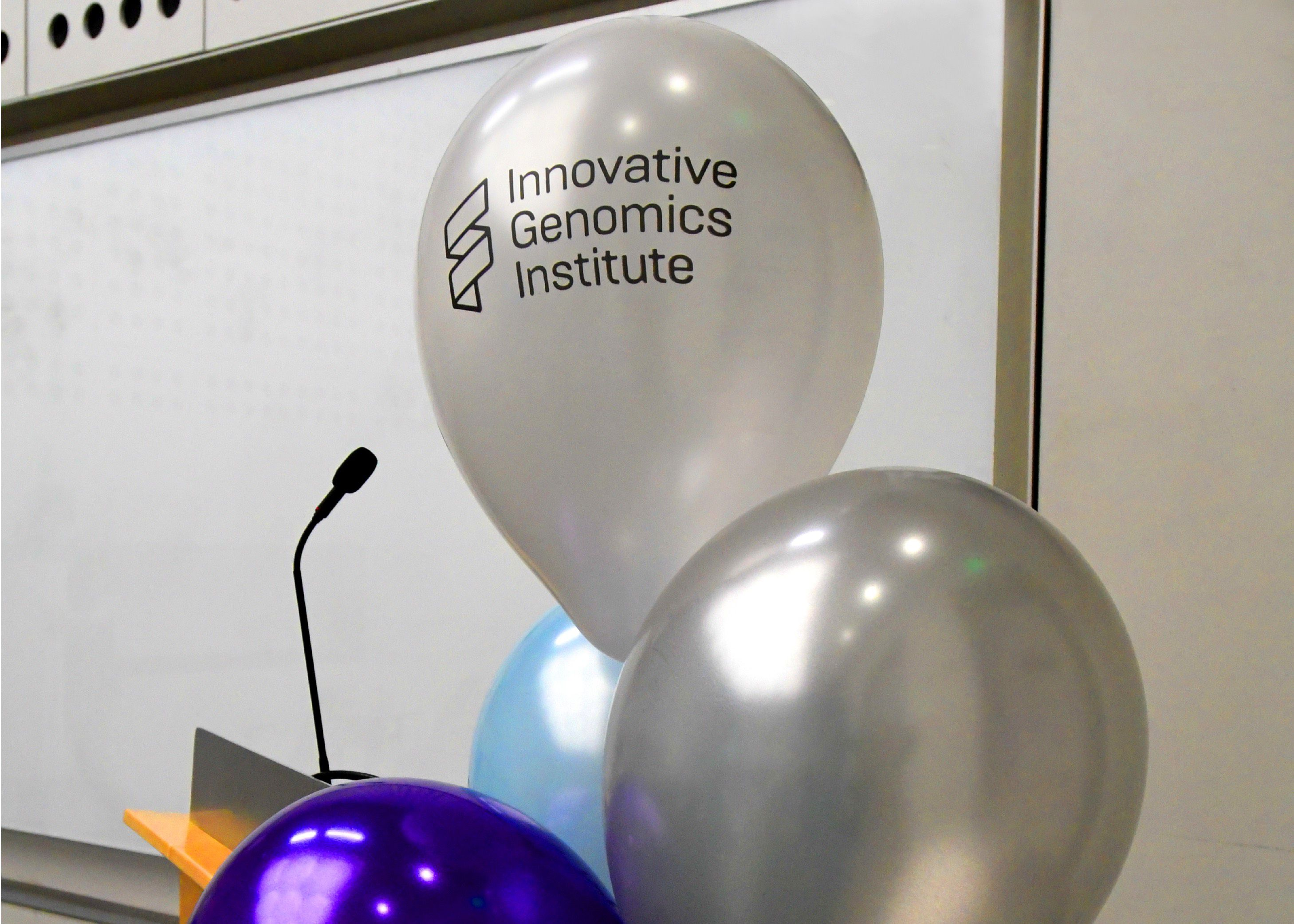 Different color balloons with the IGI logo