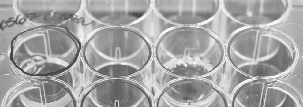 Innovative Genomics Institute scientific resources