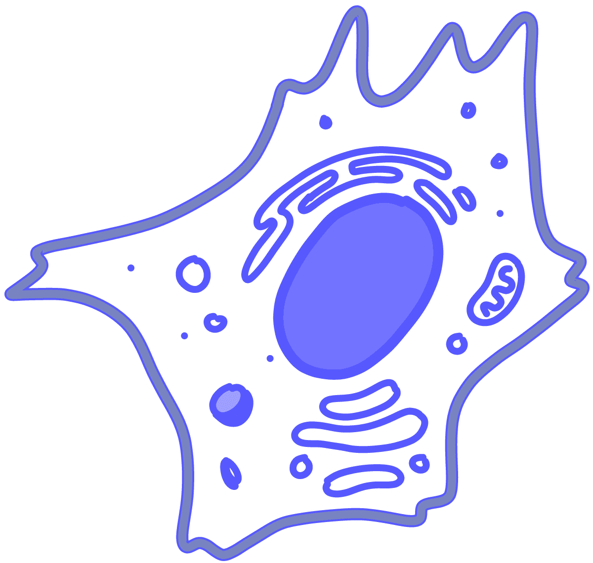 Image of a blue eukaryotic cell