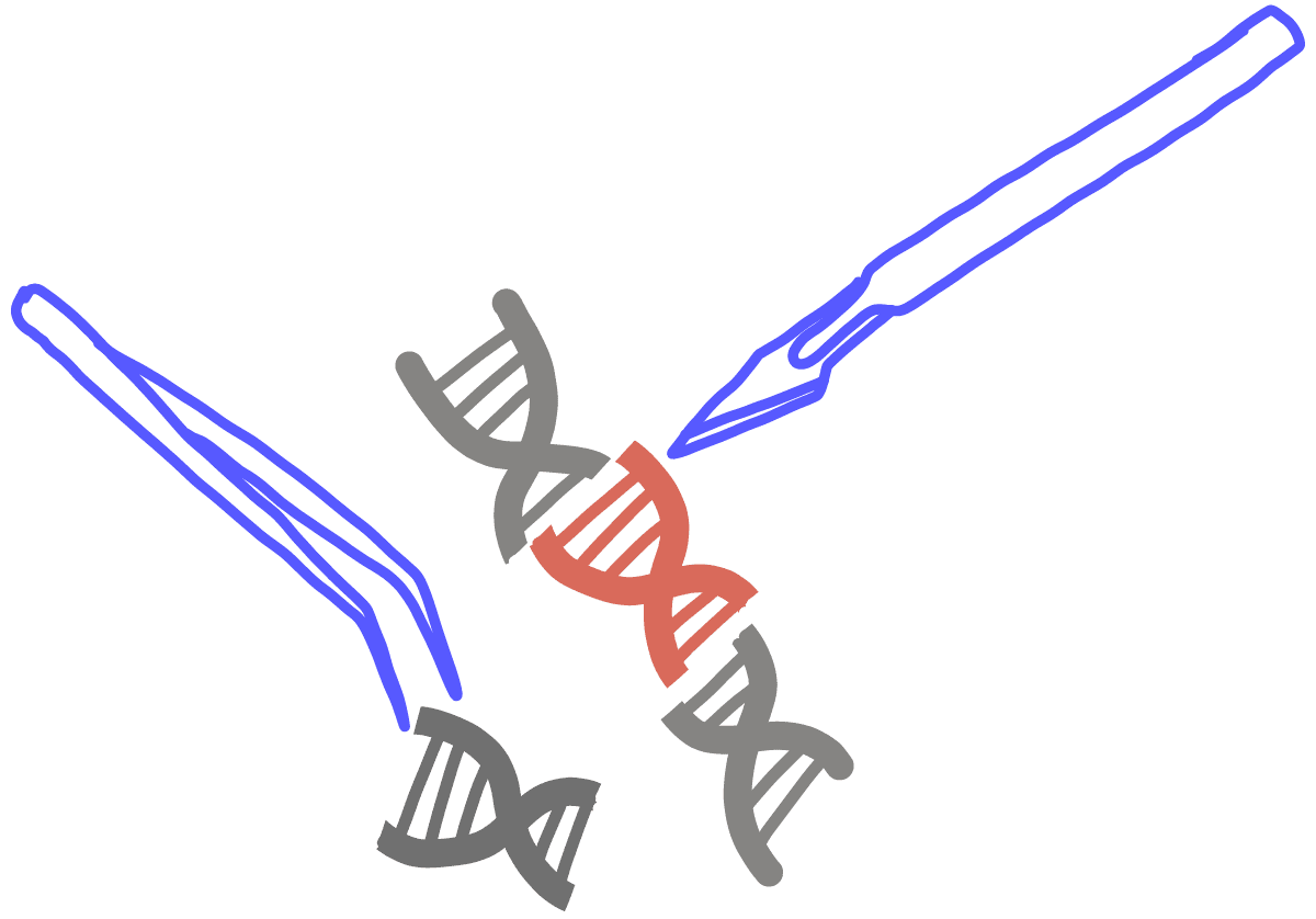 Image of a scalpel and tweezers replacing a section of DNA with a red DNA fragment.