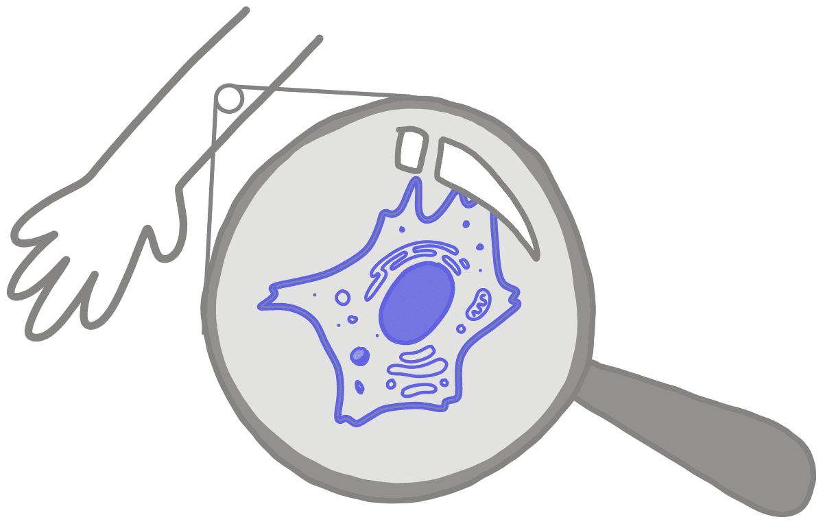 Image of a blue somatic cell under a magnifying glass. The somatic cell is being magnified from an arm.