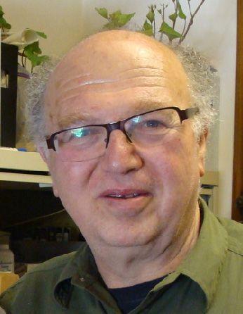 A headshot of professor David Zilberman
