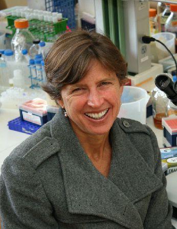 A headshot of professor Pamela Ronald