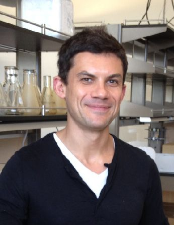 A headshot of professor Roberto Zoncu