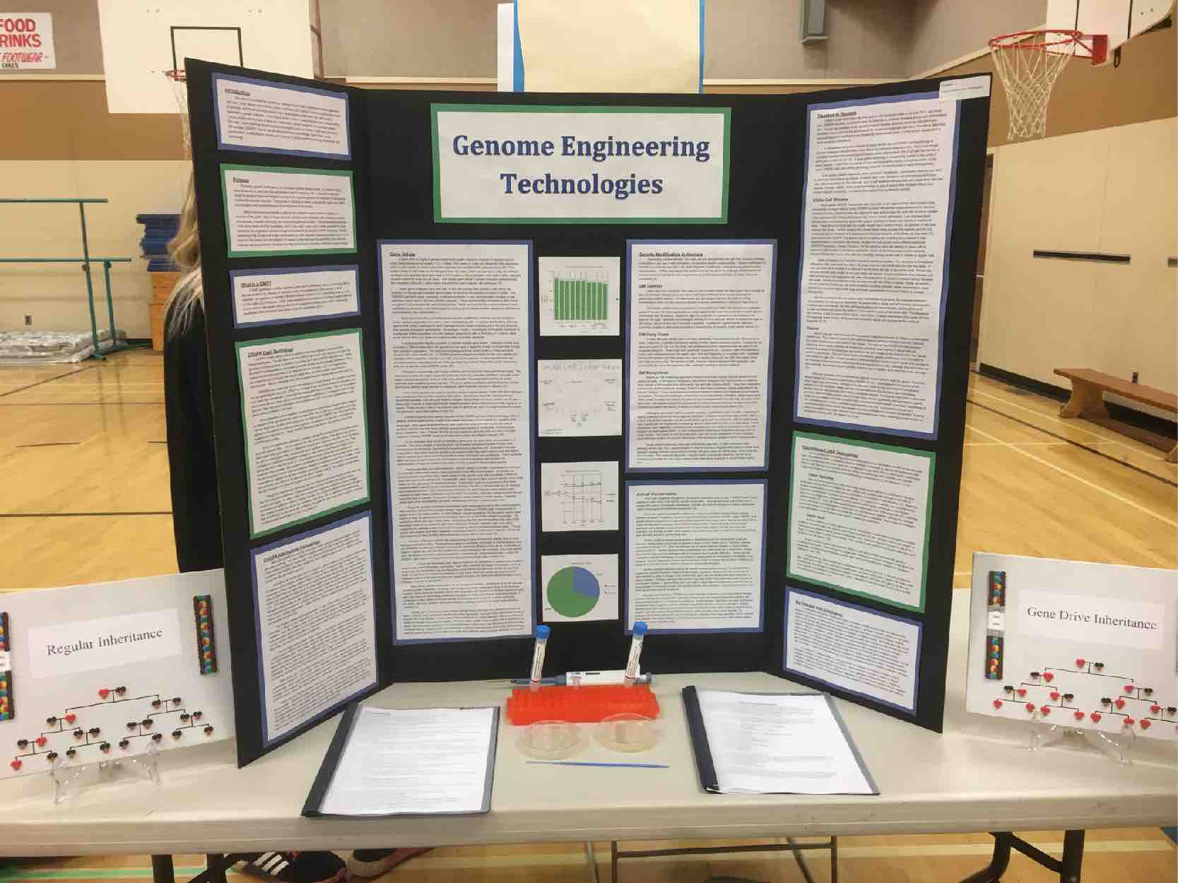 Science fair poster board explaining gene editing