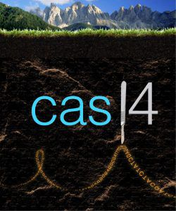 Metaphorical representation of Cas14 protein as a scalpel cutting ssDNA in soil
