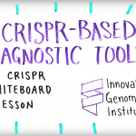 Screenshot of Youtube video discussing using CRISPR proteins as diagnostic tools