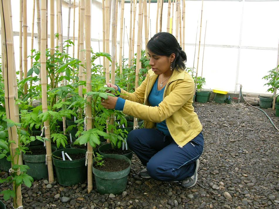 Benny Julissa Ordonez Aquino growing a plant in a greenhouse