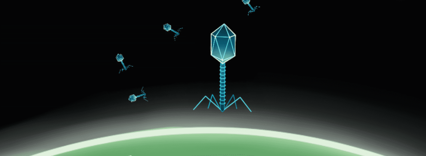 Cartoon phage landing on a green cell