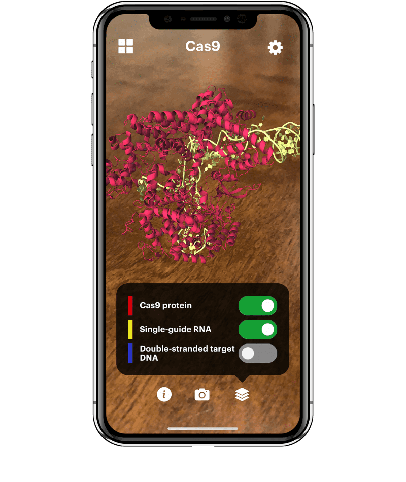 Augmented reality model of CRISPR-Cas9 shown on a cell phone screen with the option to toggle between layers of the model.