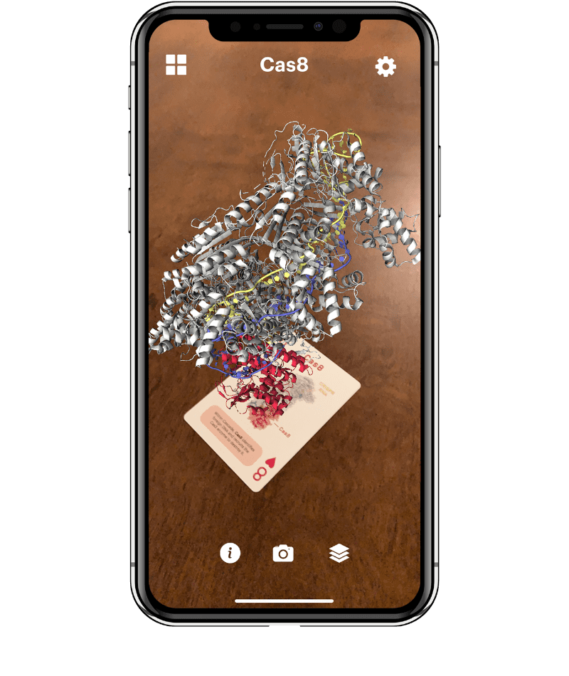 Augmented reality structure of a CRISPR-Cas complex appear on top of a playing card shown on a cell phone screen.
