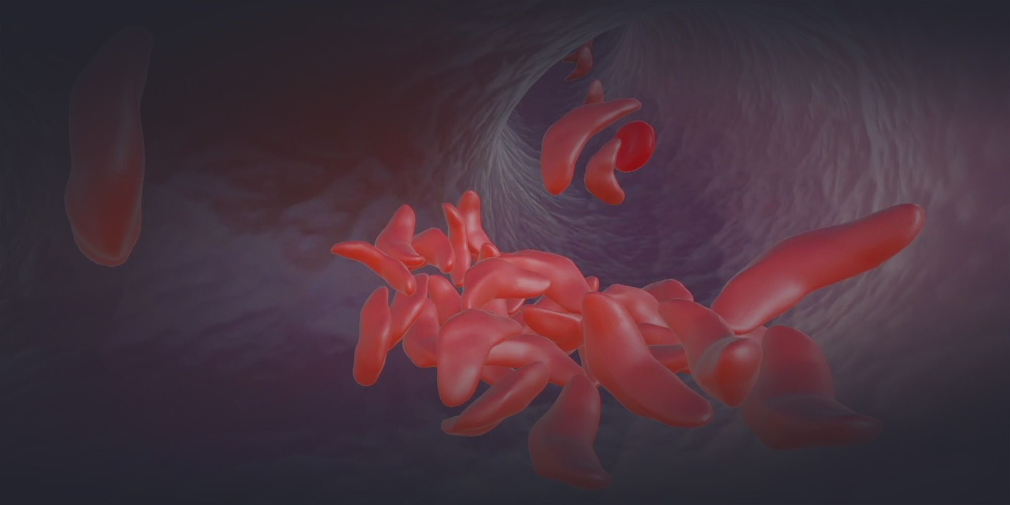 Virtual reality environment in which sickled cells are getting caught in a narrow blood vessel
