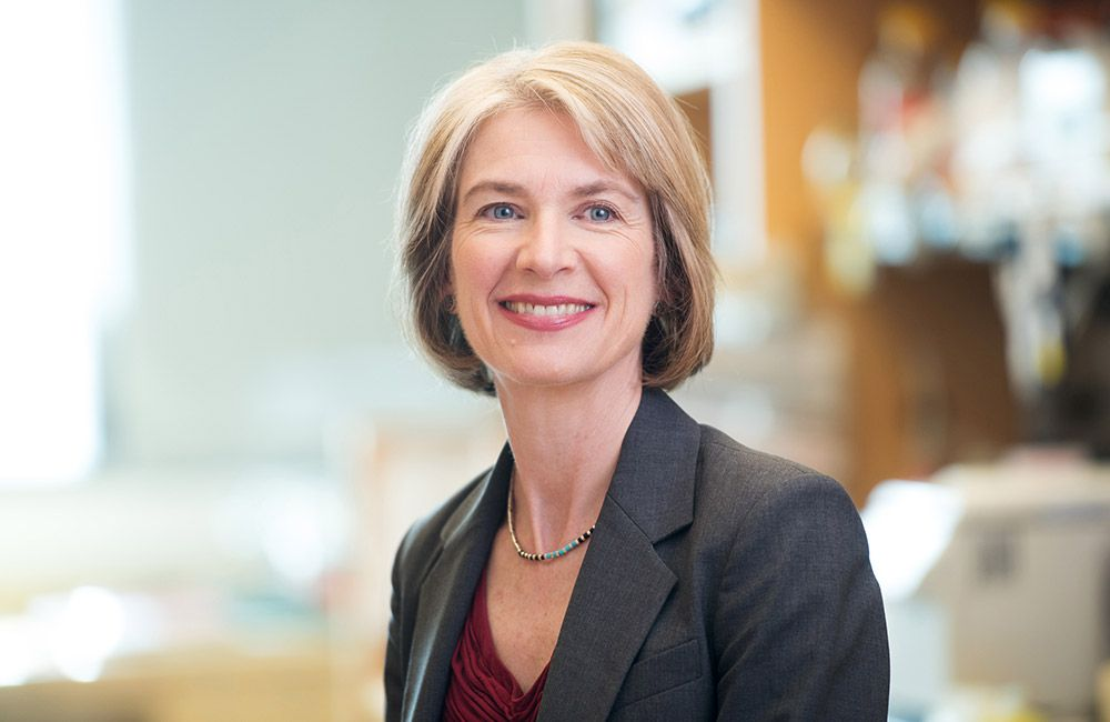 headshot of Jennifer Doudna