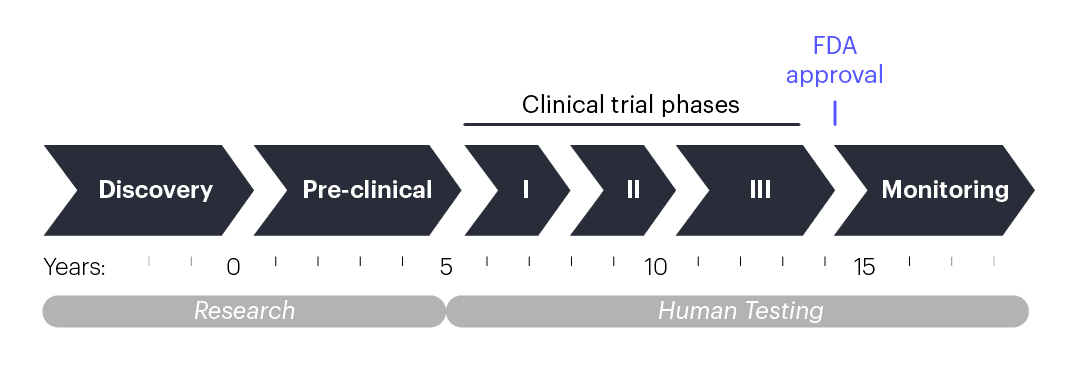 Timeline showing approximate duration of different phases of clinical research and testing.