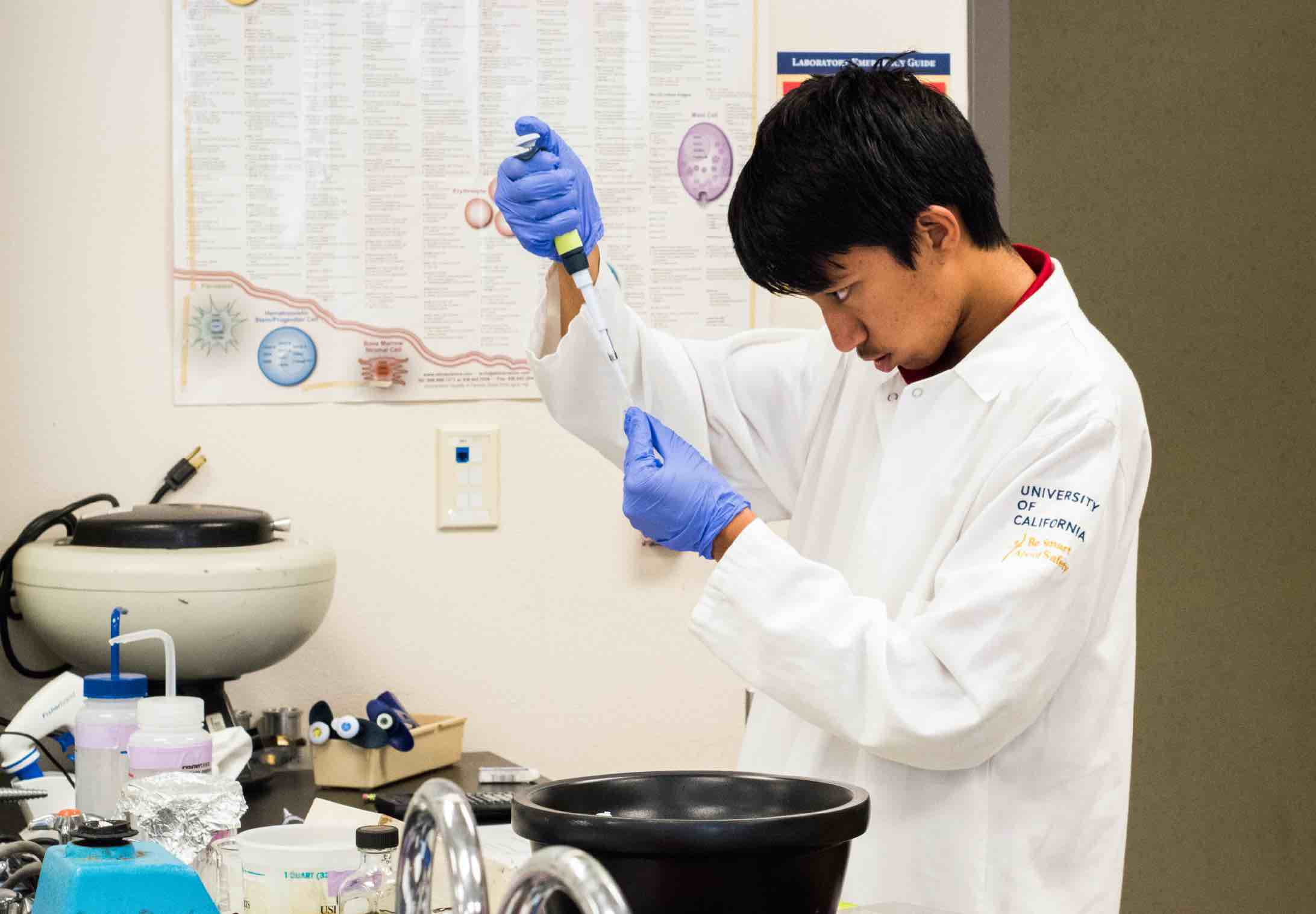 An undergraduate performs an experiment for the IGI's CRISPR course at UC Berkeley