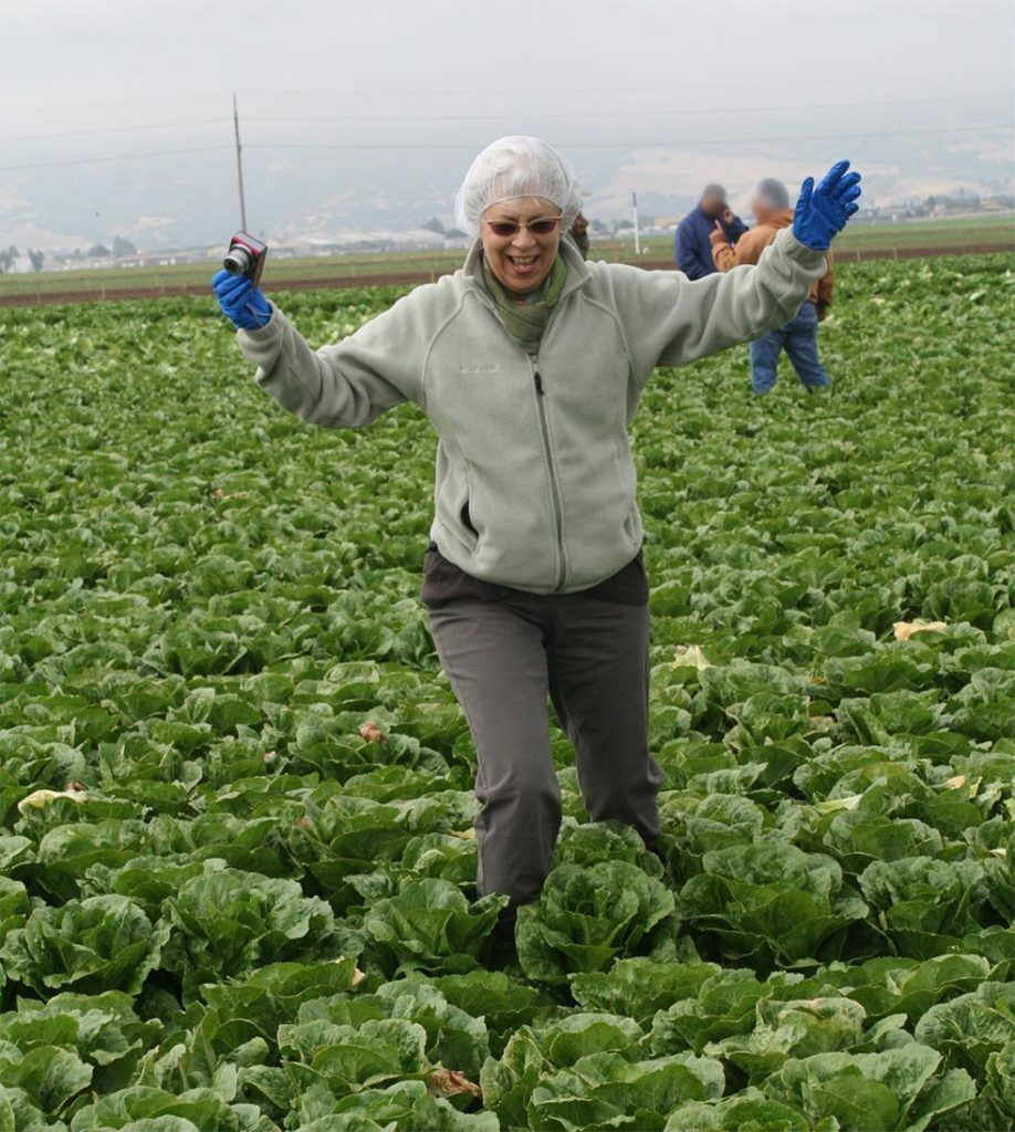 Brenda Eskenazi in the lettuce field. Currently studying COVID-19 and California farmworkers.