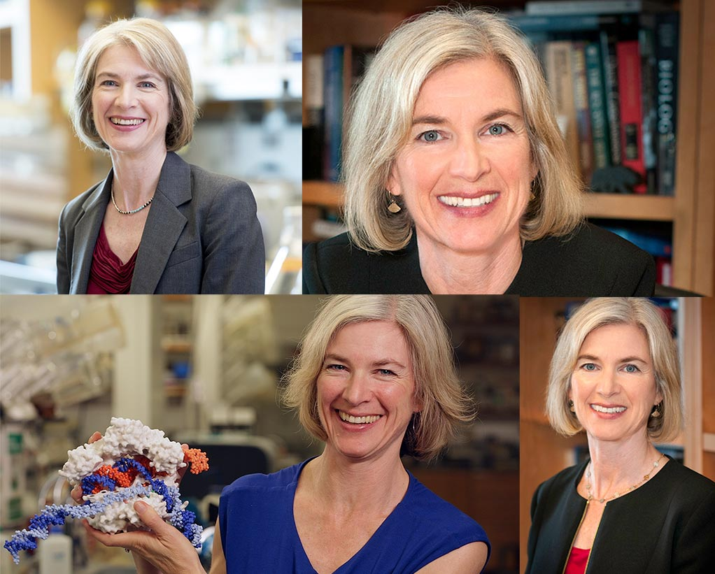 Photos of Jennifer Doudna arranged in a grid