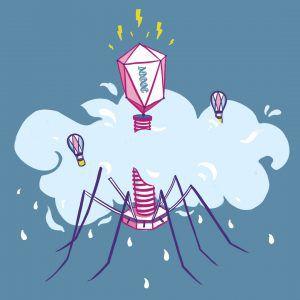 Illustration of huge phage