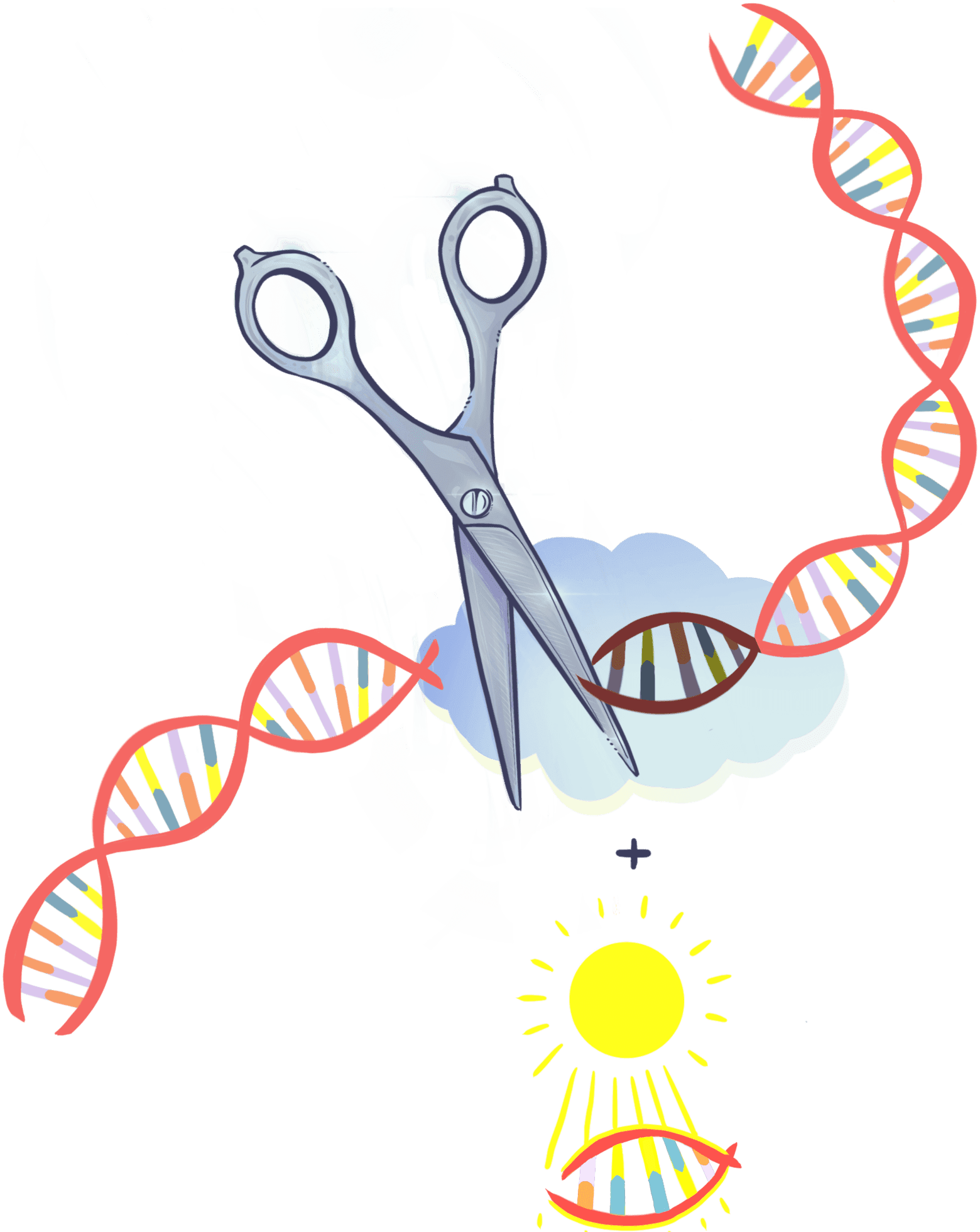Illustration of scissors cutting DNA and a piece of donor DNA ready to help with the repair