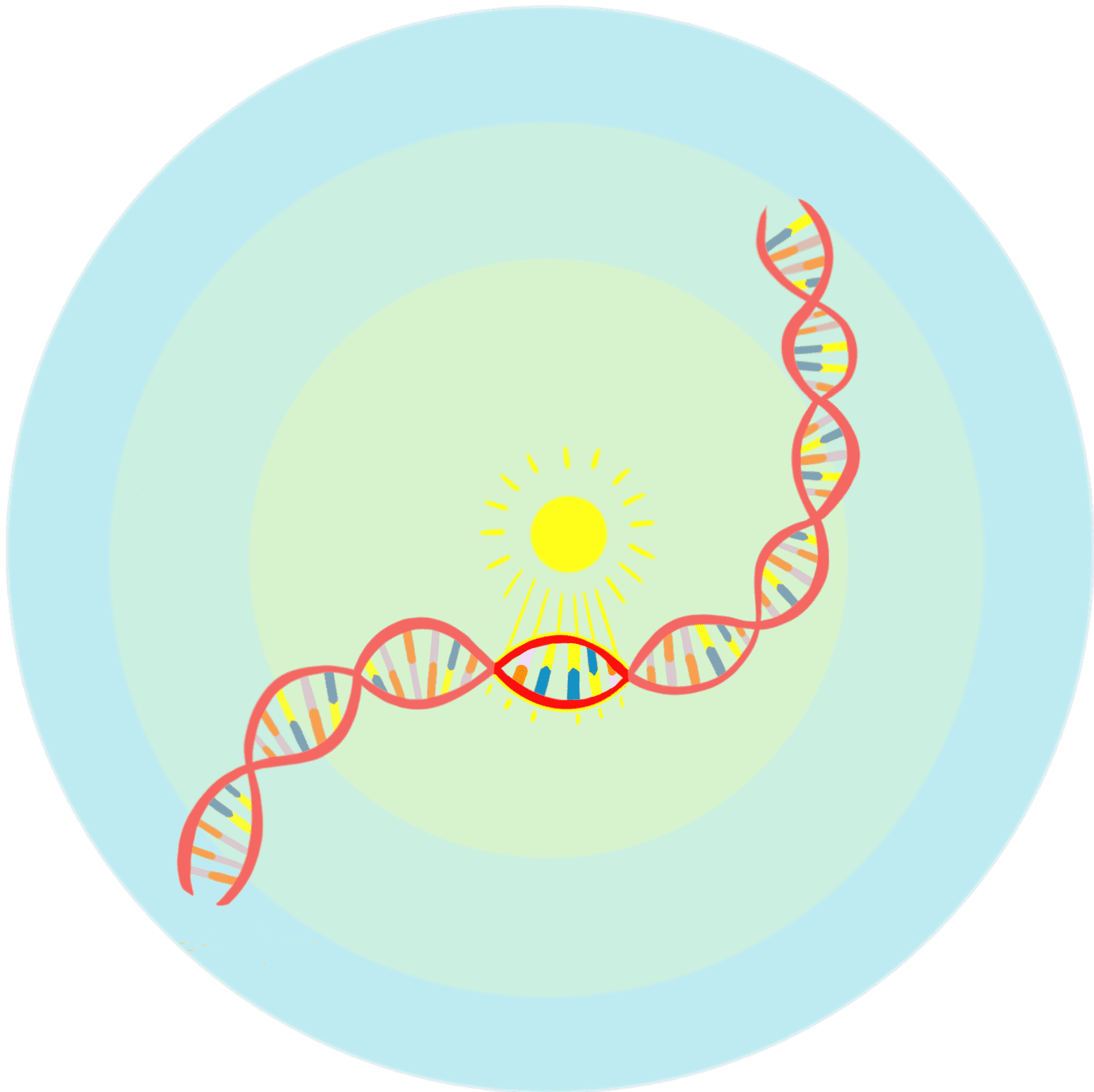 Illustration of DNA with the sun shining behind it