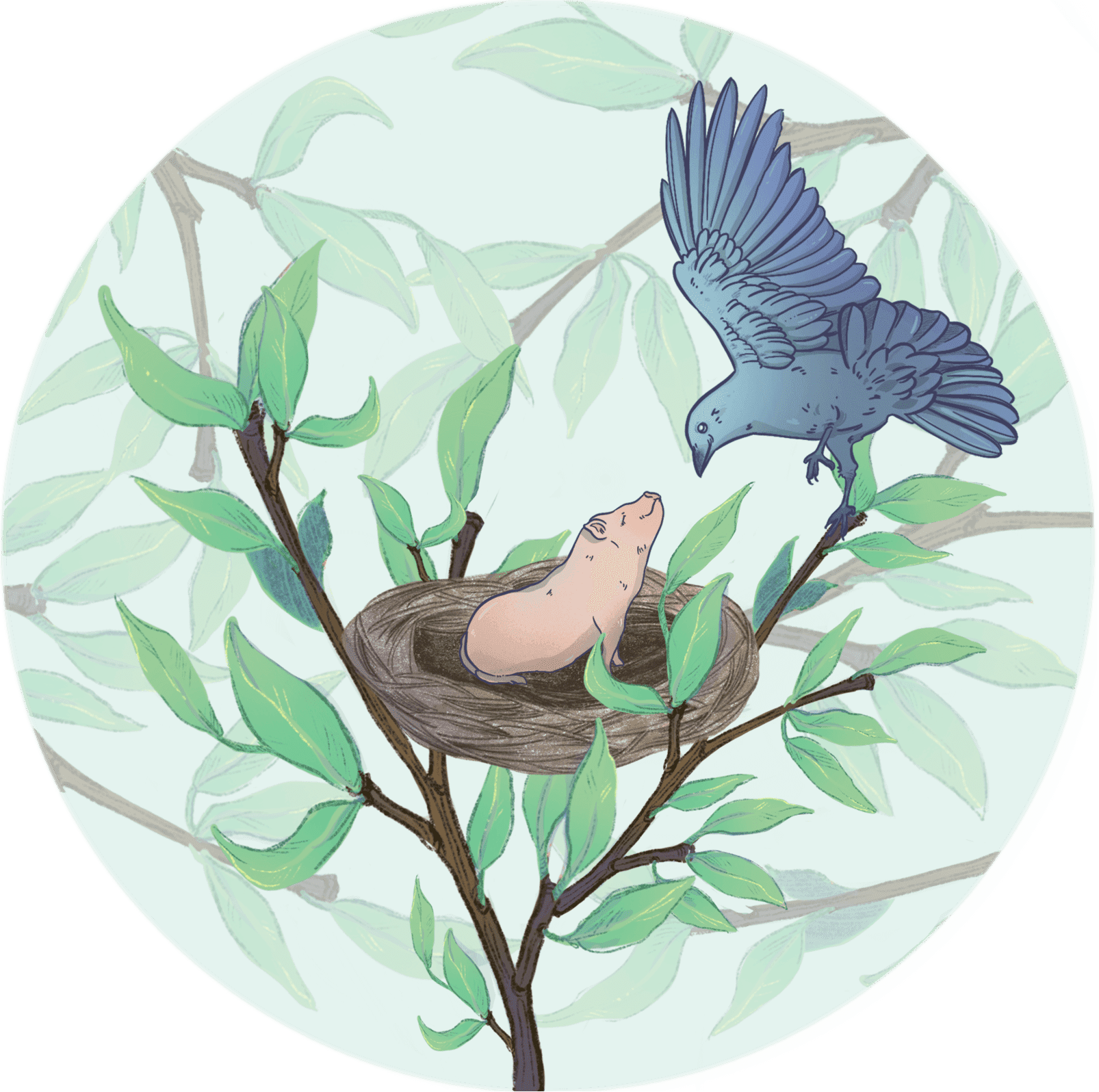Illustration of a bird next to a tiny pig in its nest