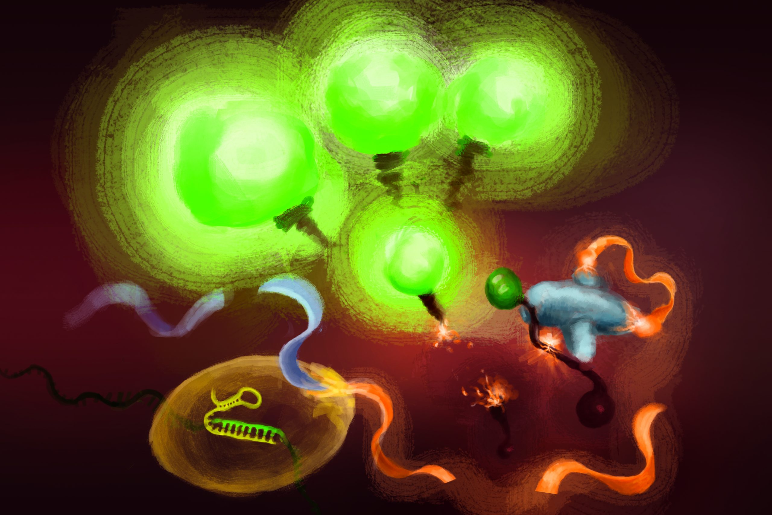 illustration shows RNA being cut by CRISPR enzymes and bright green light emitted