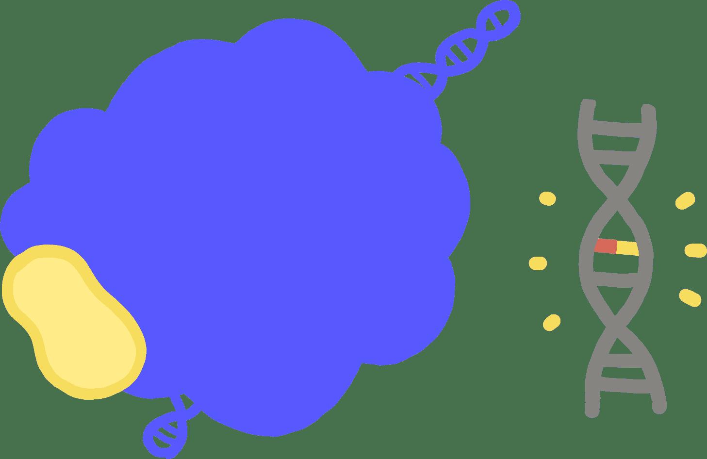Illustration of base editing