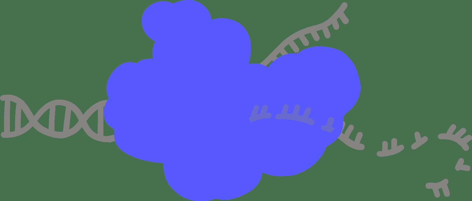 Illustration of Cas3