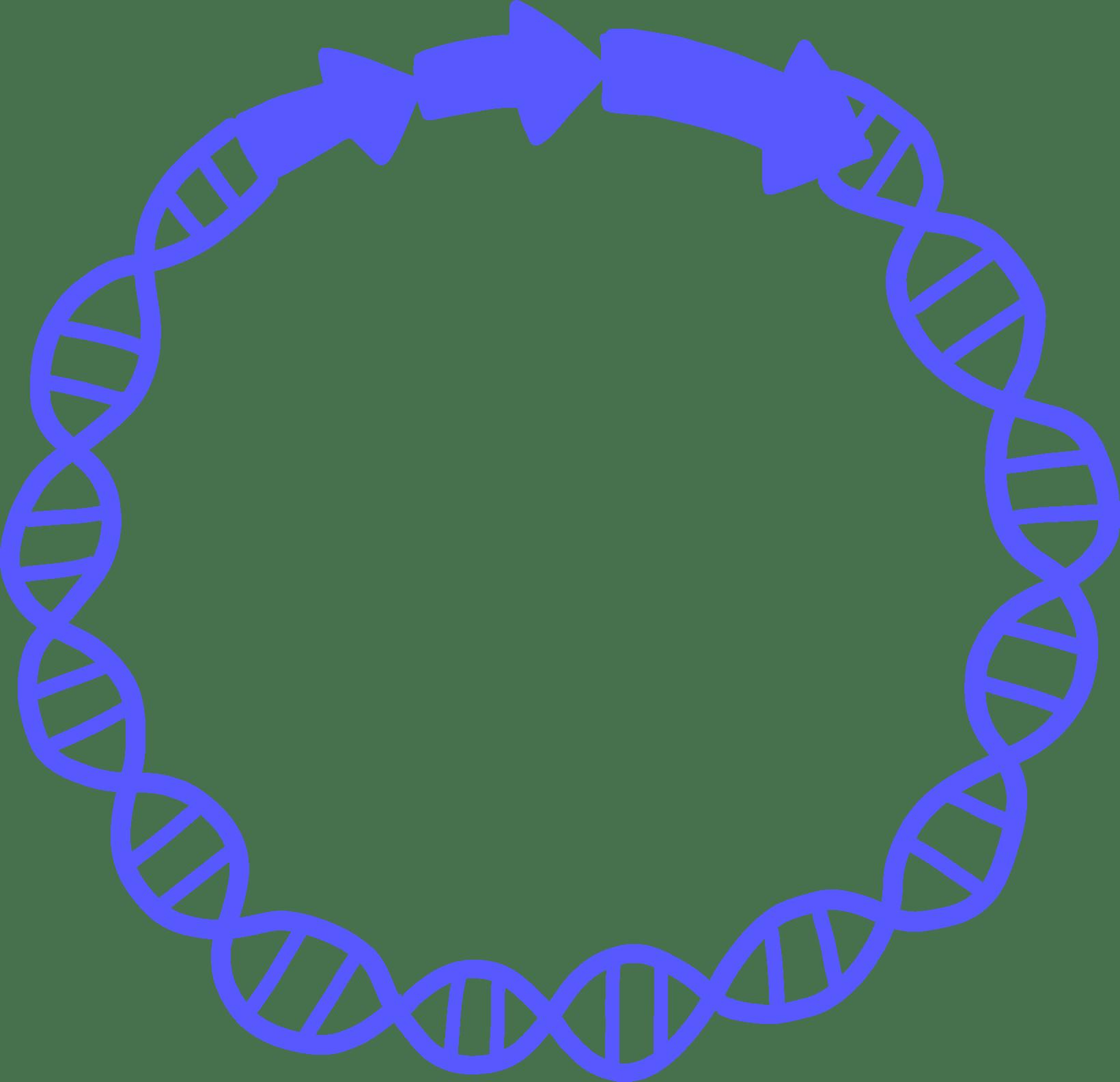 Illustration of a plasmid